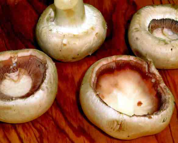 1GarlicOnionBaconStuffedMushrooms-Mushrooms